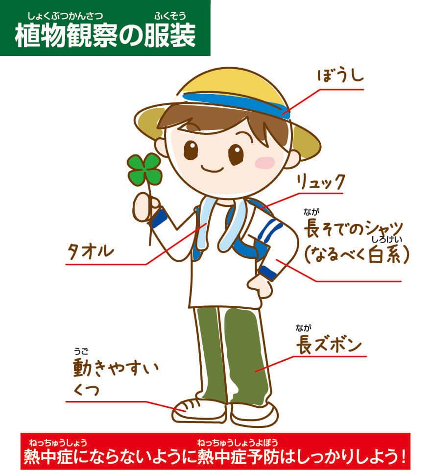 植物観察に適した服装